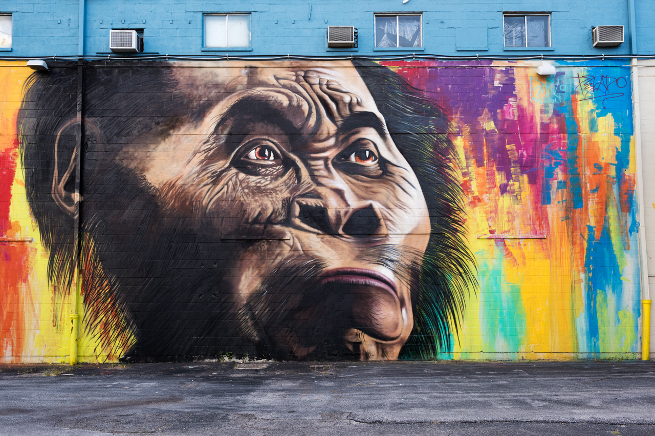 Early Man - collaborative mural by Pablo Machioli and Alfredo Segatori