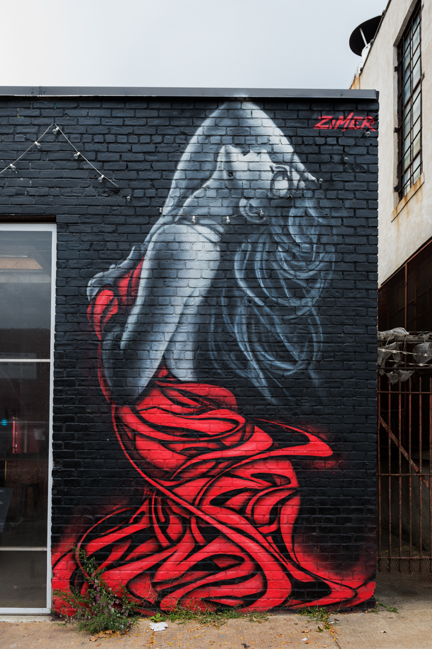 Lady in Red by Zimer