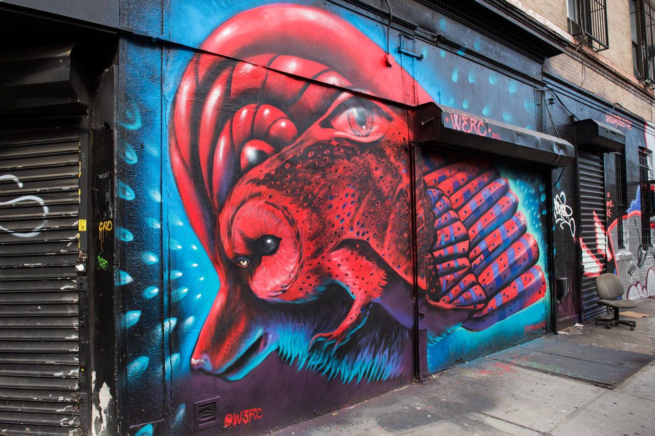 Wise Wolf pack by Werc in Bed-Stuy