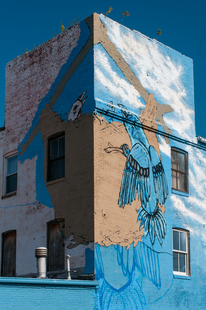 Stefan Ways rescales his section of the Warner Street Mural