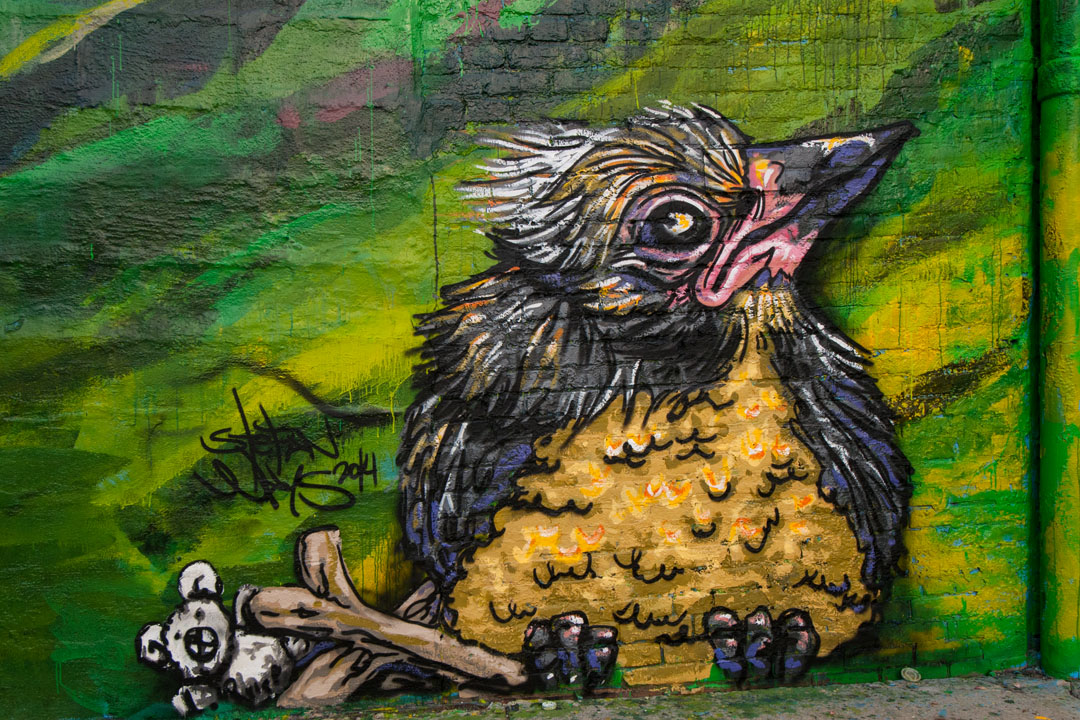Baby bird - detail of the Warner Street Mural by Stefan Ways