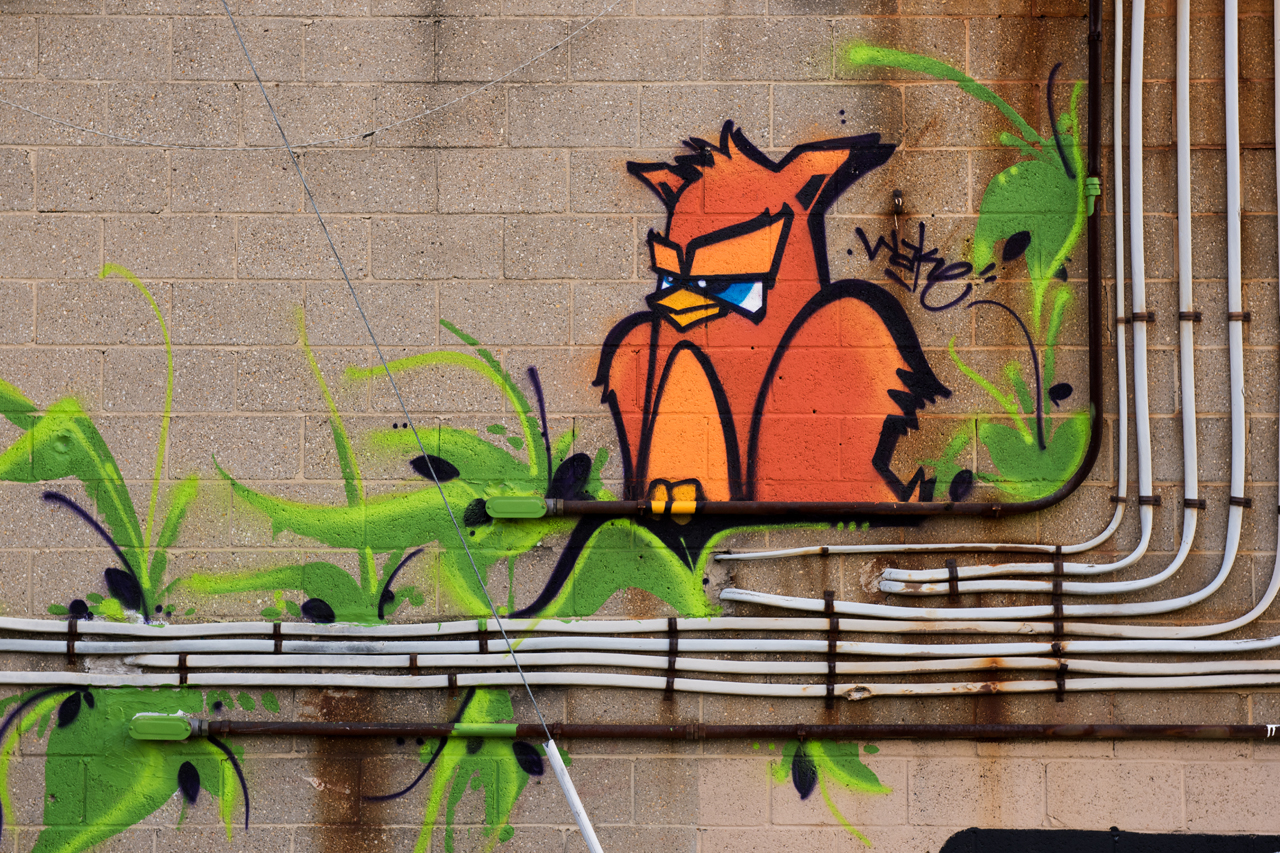 Wise old owl by Wake - Shift:Baltimore