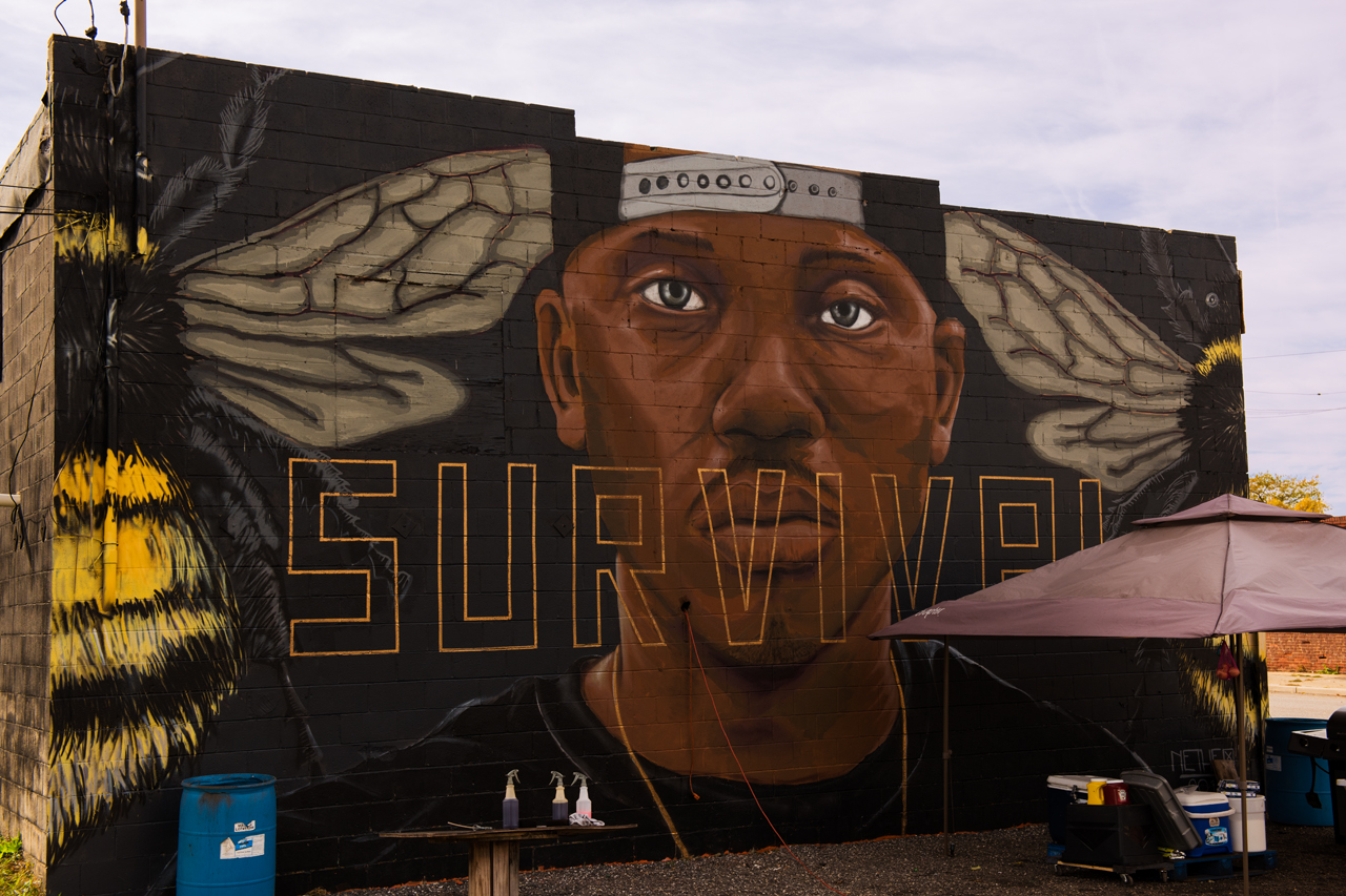 Survival by Nether ... Eubie Blake: Sandtown Mural Project