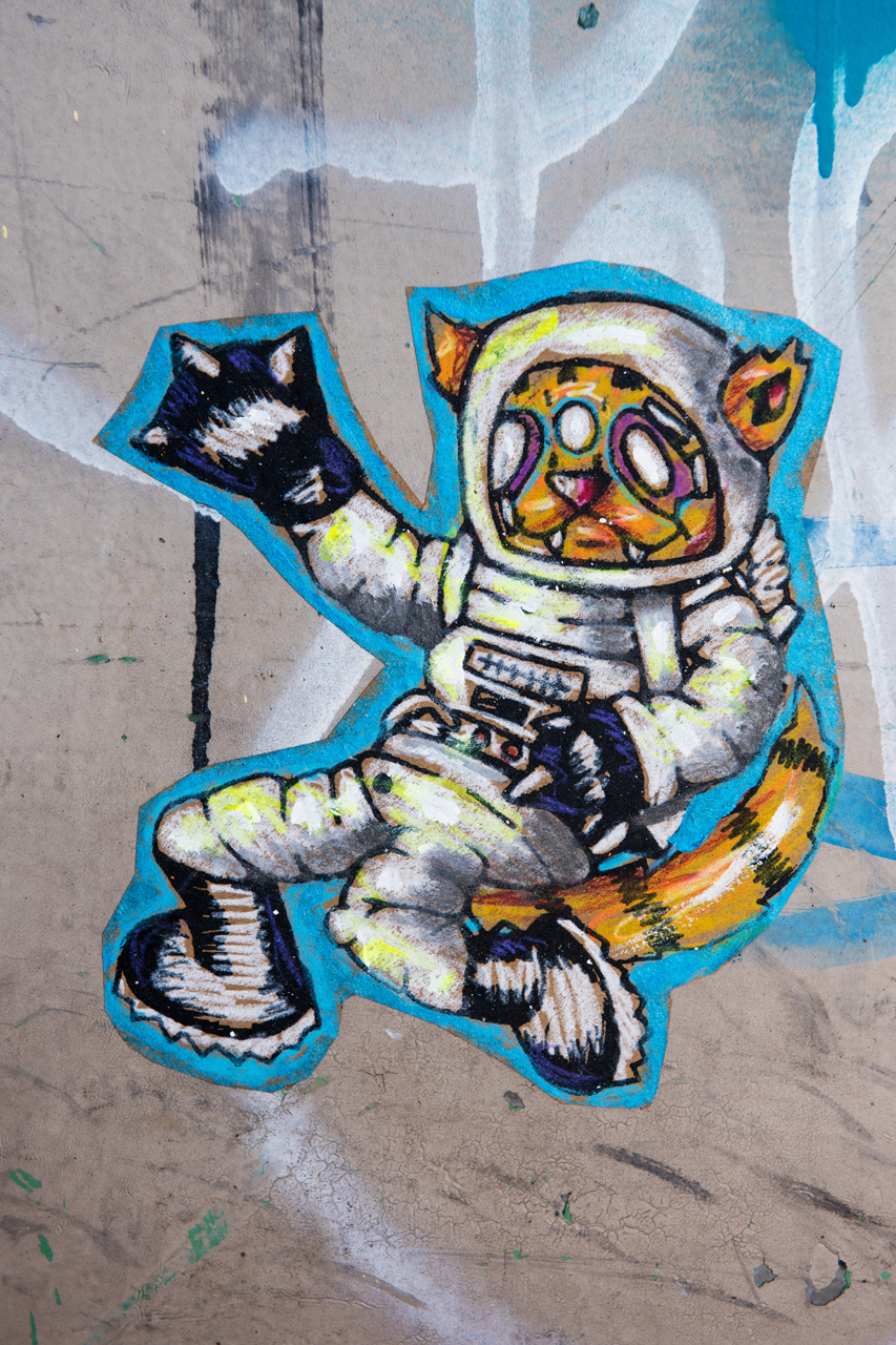 City Kitty in space