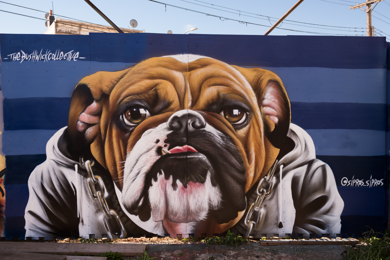 Headlining today's post ... an English bulldog with bling by Sipros-Sipros